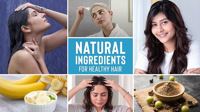Fight Hair fall, Dandruff, Oily Scalp and Roughness with these Natural Remedies | Hair Growth Tips