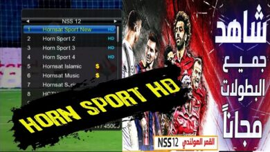Hornsat Sports New Biss Key and Frequency On NSS 12